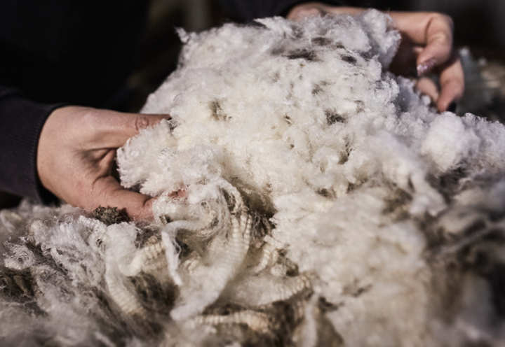 The Latest Innovations in Wool